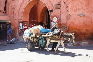 20140427-Morocco-1832